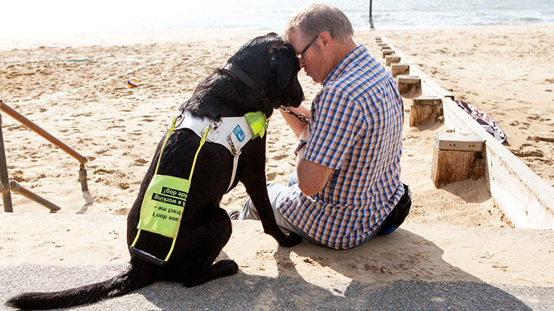 Guide dog owner puts his head against guide dogs'