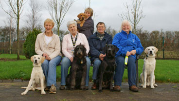 A group of volunteers sitting on a bench with trainee guide dogs
