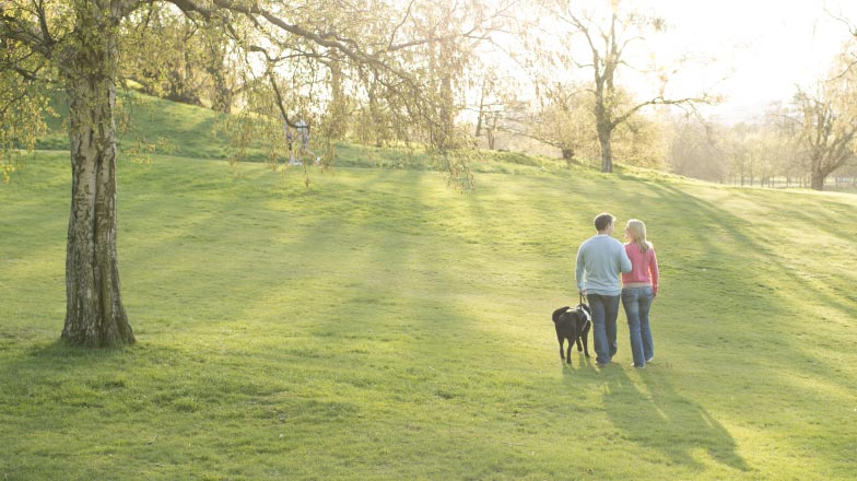 A couple walking together with a guide dog in a park