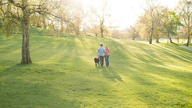 2 people and guide dog walking in a park