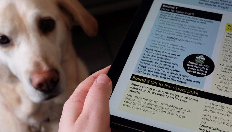 Guide Dog looking at owner reading brochure