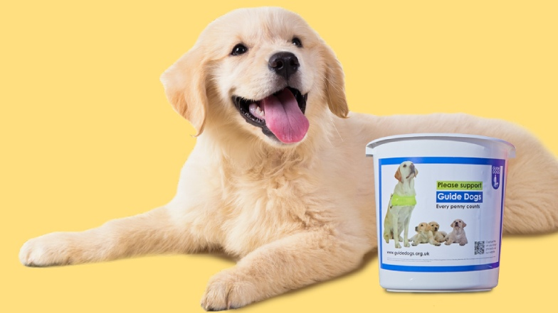 Happy dog with guide dogs collection bucket