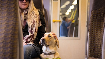 Guide dog owner Lynette with guide dog sitting on a train