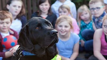 A guide dog sat with a group of school children