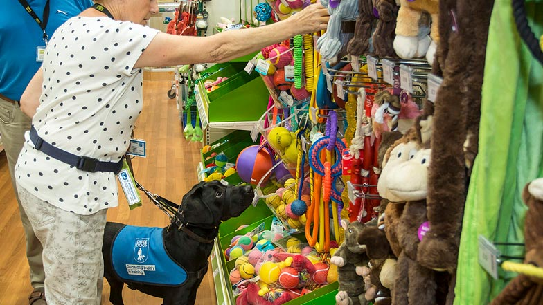 Hattie looking at dog toys in the pet shop