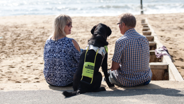 A guide dog owner with his Guide Dog and a companion sitting on a beach